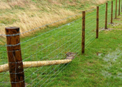Post & Wire Stock Fencing